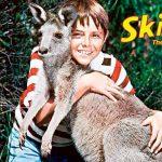 Skippy the Bush Kangaroo – Theme Song Download