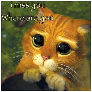 I Miss You Meme 13 300x300 11 best i miss you meme of 2018 instrumentalfx